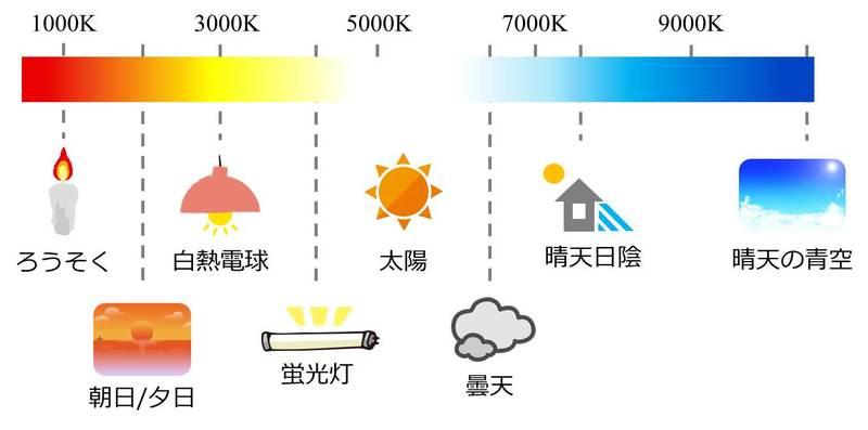 光源による色温度の違いのイメージ図