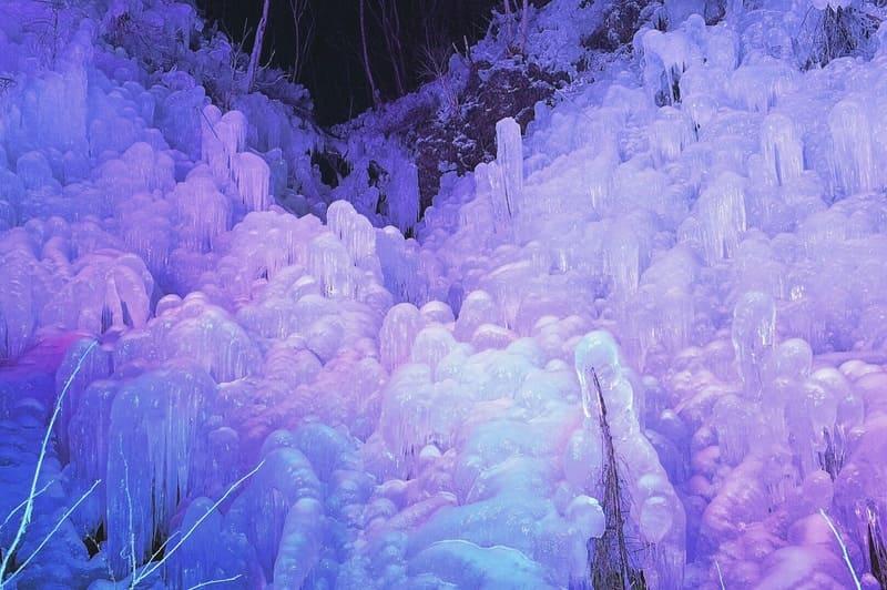 紫色にライトアップされたあしがくぼの氷柱を見上げた写真
