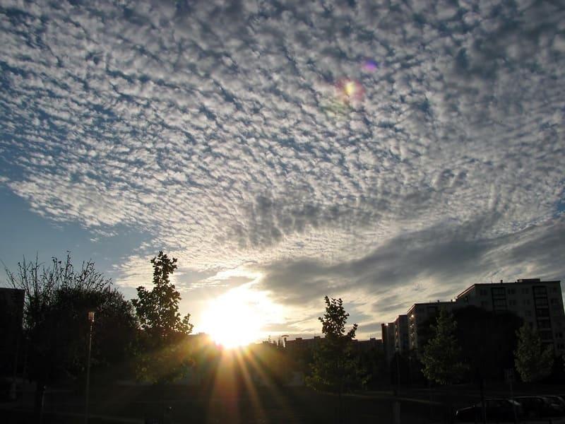 太陽に照らされている巻積雲