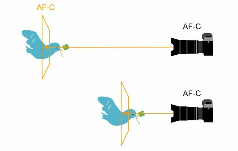 オートフォーカスコンテニュアスモードのピントの合わせ方イメージ図