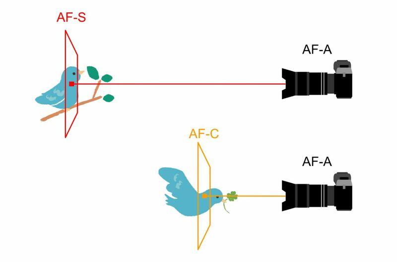 フォーカスモードオートのピントの合わせ方イメージ図