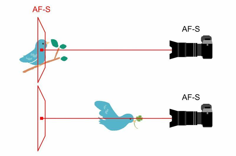 オートフォーカスシングルのピント合わせイメージ図