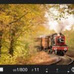 秋の機関車が奥から手前に向かってきている写真