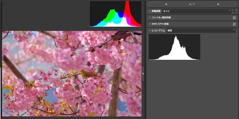ヒストグラムを見ながら編集している様子のソフトのスクリーンショット
