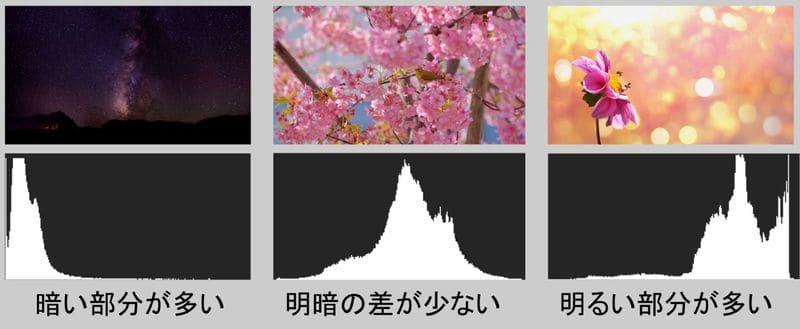 写真によるヒストグラムのイメージの違いを示した画像