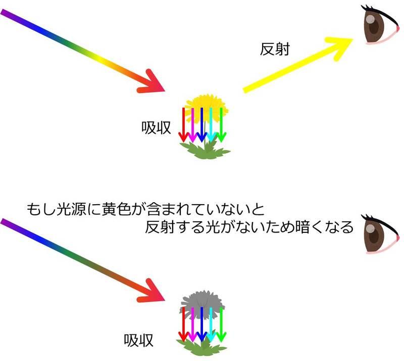 光と色の反射の関係イメージ図