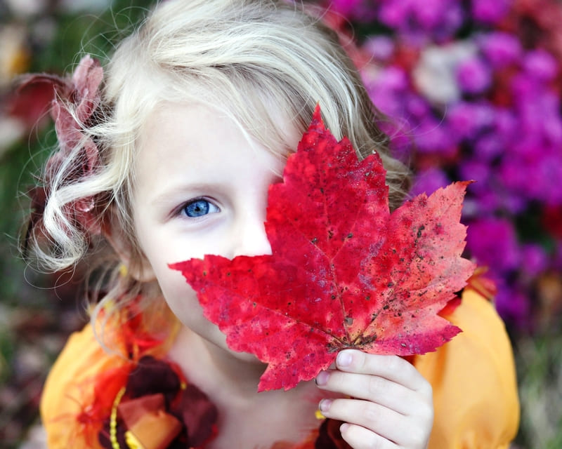 紅葉した落ち葉を顔の前で持っている女の子を露出補正を上げて撮った写真
