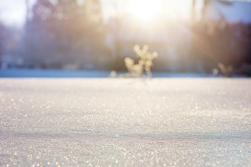 太陽の光を全面に受ける大地に積もった雪と自然