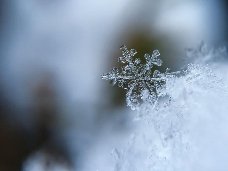 マクロレンズで撮られたきれいな形をした大きな雪の結晶