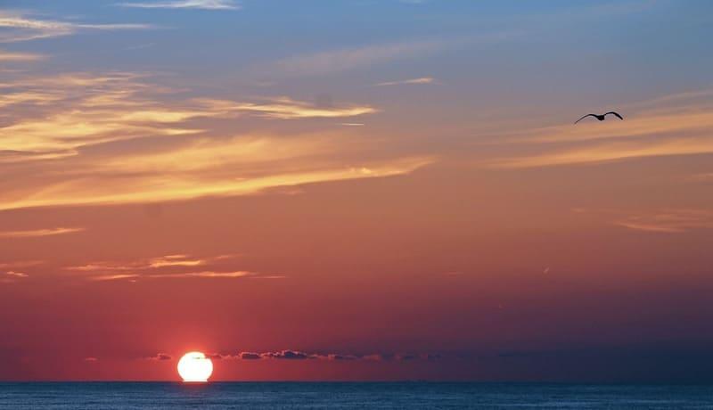 水平線に浮かぶ太陽の写真