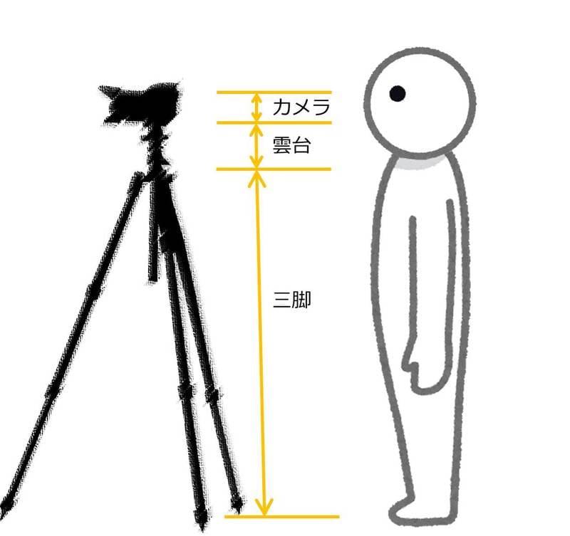 三脚のアイレベルがわかる説明イメージ図