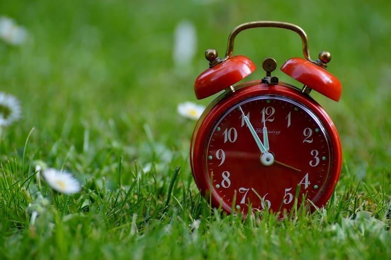 芝生に置かれたアナログの目覚まし時計の写真