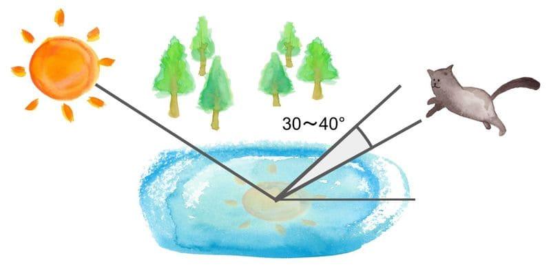 PLフィルターで光の反射を抑えるイメージ図
