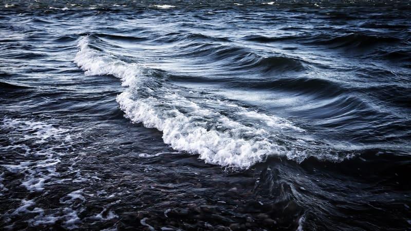 暗い海の写真