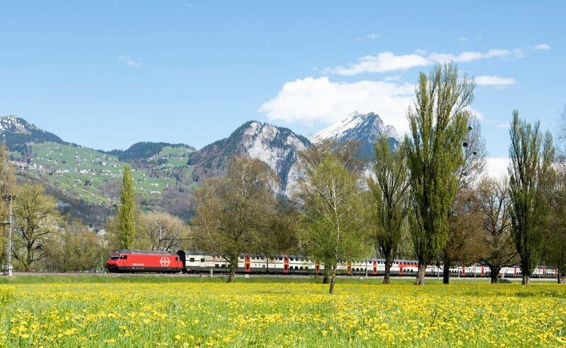 菜の花と山と列車の写真
