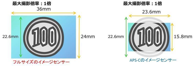 最大撮影倍率とイメージセンサーの関係イメージ