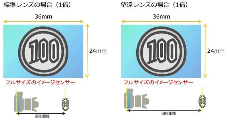 焦点距離と最大撮影倍率の関係イメージ