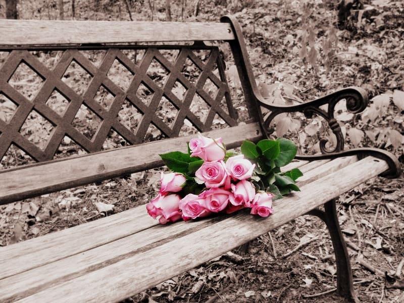 ベンチに置かれた花束