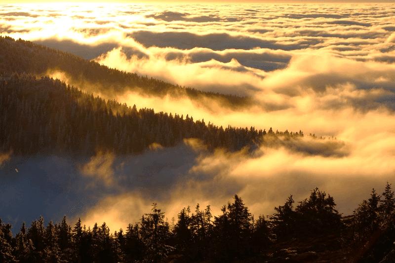 日の出直後の雲海