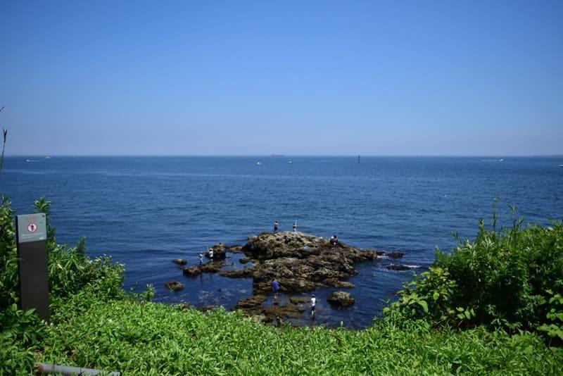 猿島の岩場