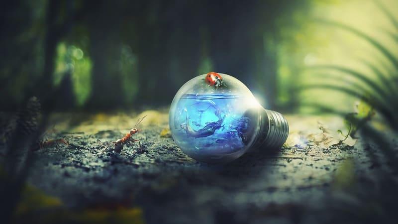 小さい世界と電球の中の世界