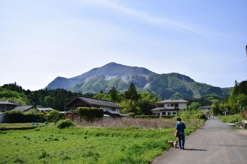 横瀬駅から羊山公園に向かう途中の武甲山